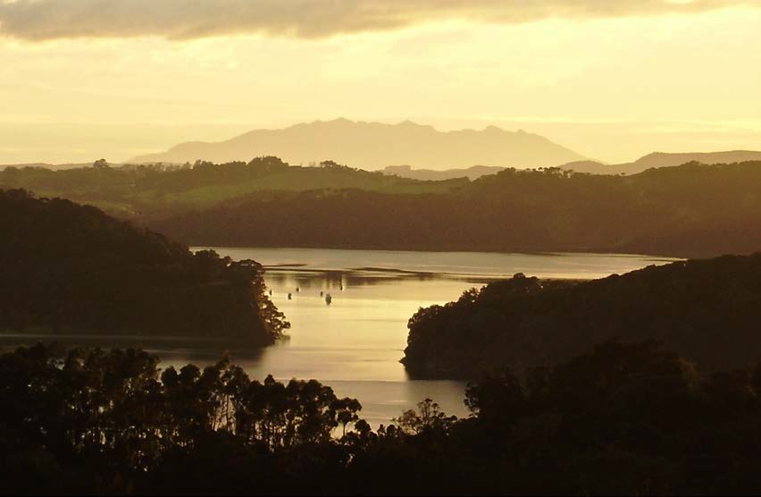 Sunrise on the Mahurangi Harbour, taken from my verandah.